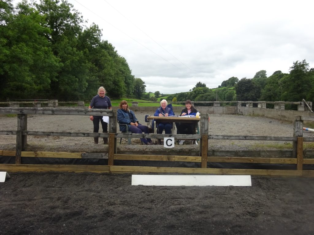 equine judges and schooling