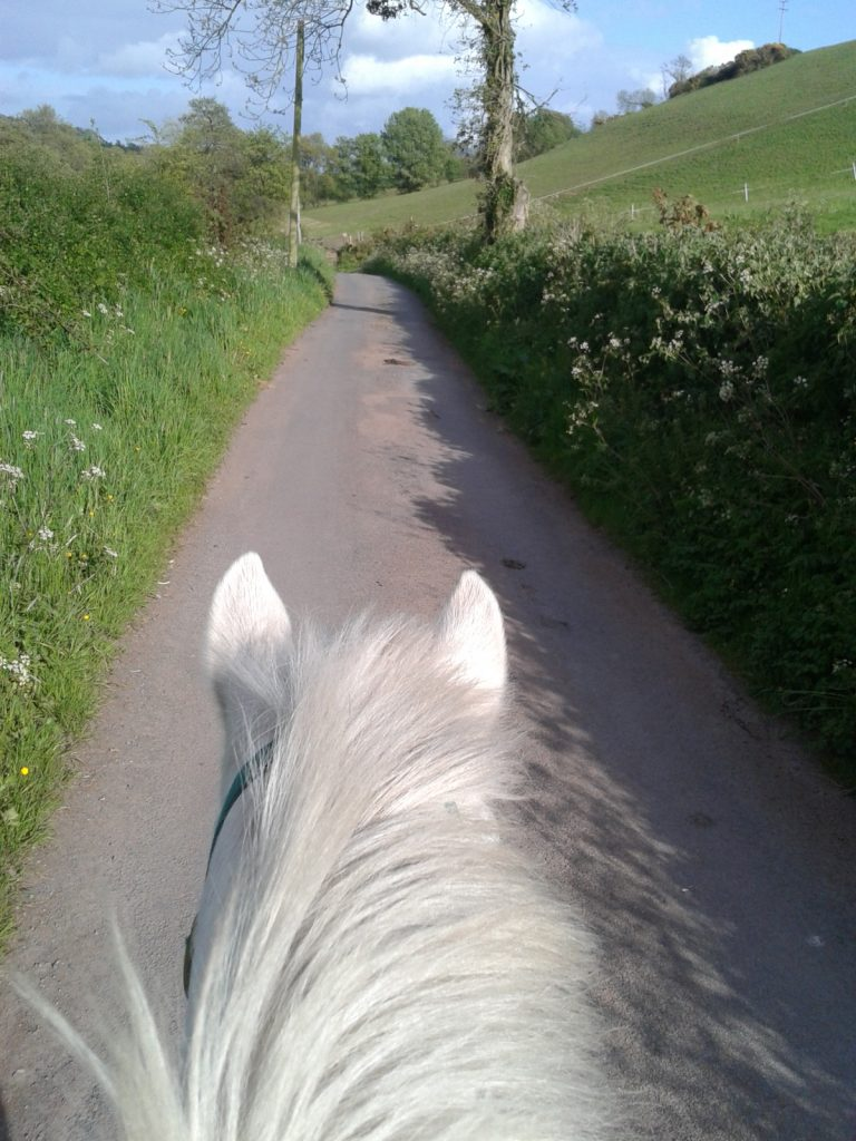 country lane hacking