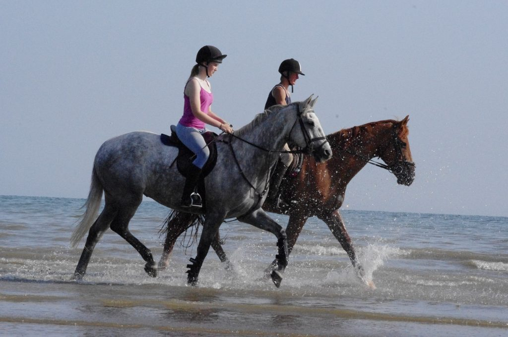 horse riding along the sea shore, splashing in waves