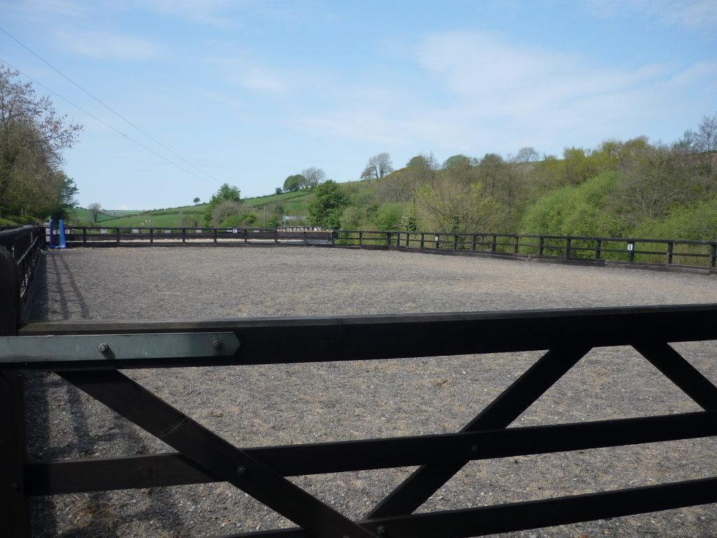 equine exercise yard